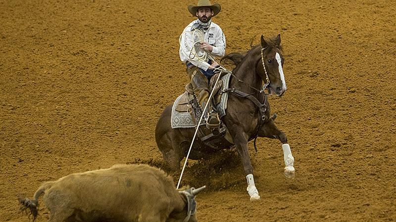 Matt Koch stopping a steer during the World's Greatest Horseman