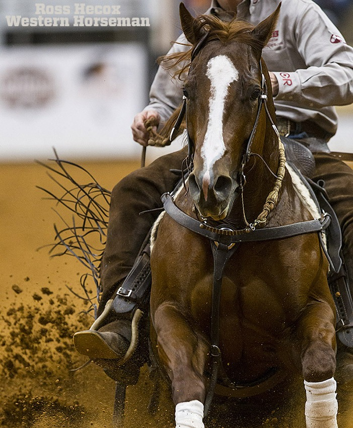horse sliding to a stop at World's Greatest
