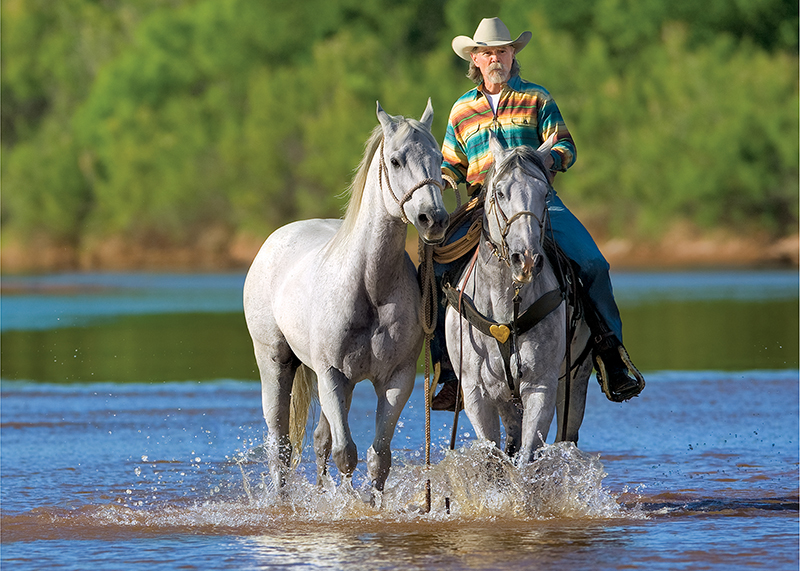buck taylor rides horses across river