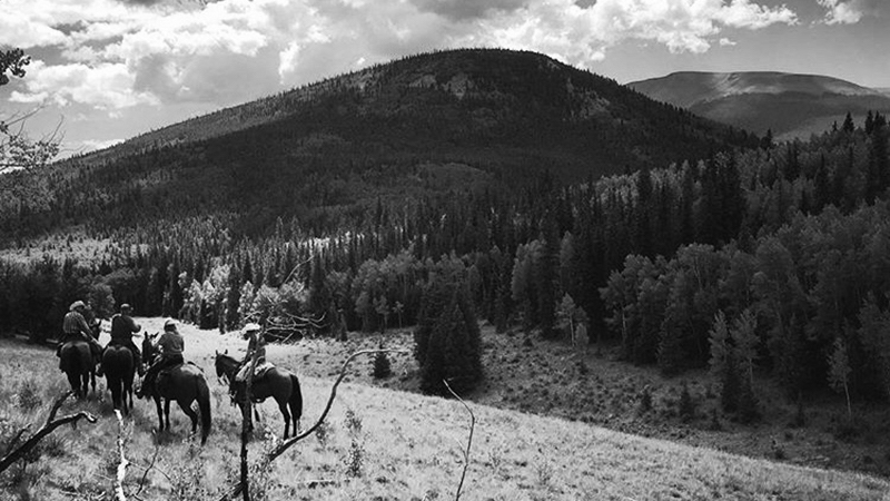 people riding horses on a backcountry trail