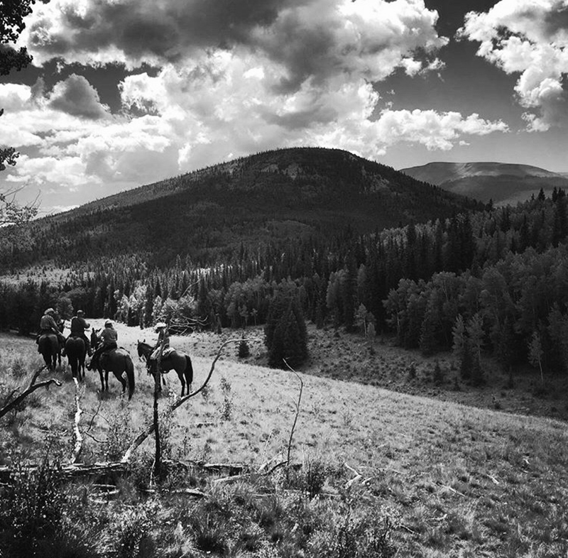 people riding horses through the mountains
