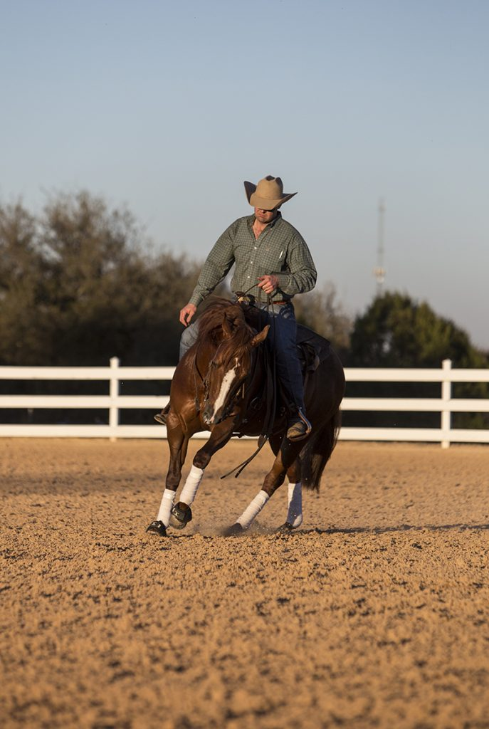 riding reining horse in a circle