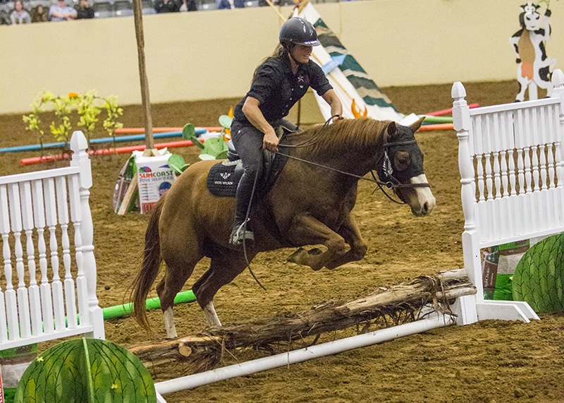 Vicki Wilson and her colt Six Limits jump over an obstacle on the final day of the competition.