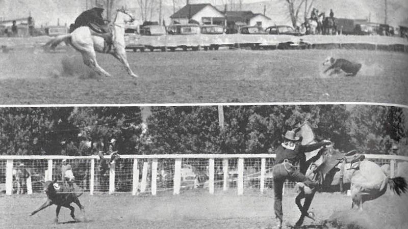 calf roping shots from 1941