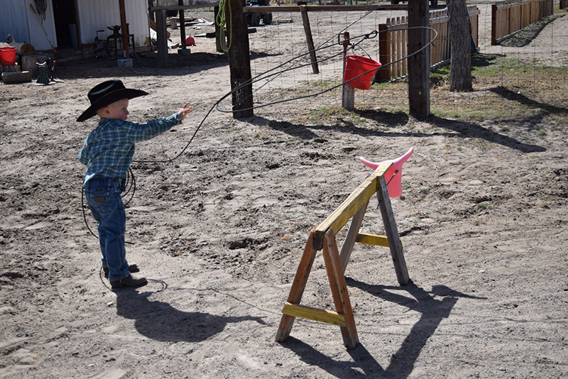 little cowboy practices swinging a rope