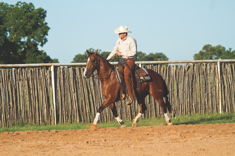 Kory Pounds trotting a hot horse.