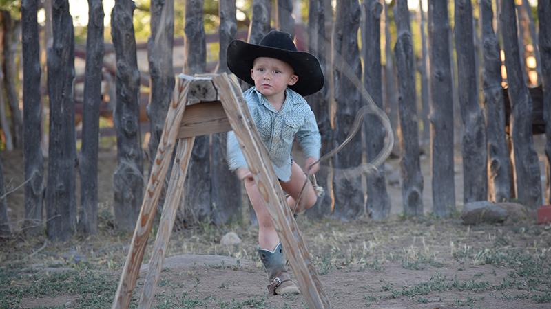 cedar stay fence with kid roper