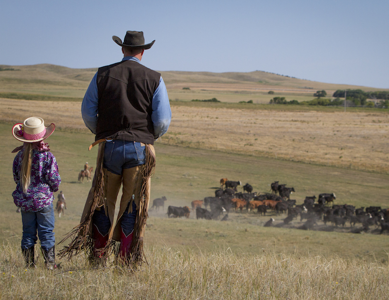 Dale Eng and his daughter standing in pasture looking out over cattle