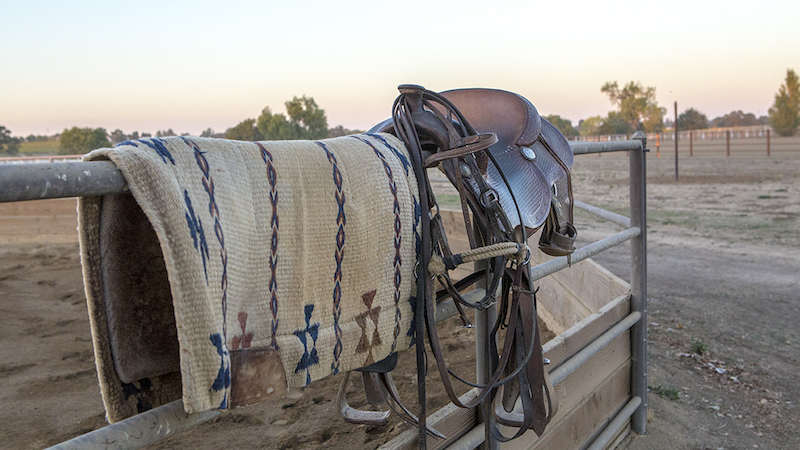 saddle and other tack hanging on fence