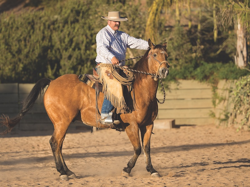 Bruce Sandifer demonstrating why you shouldn't have wide hands when riding in a hackamore