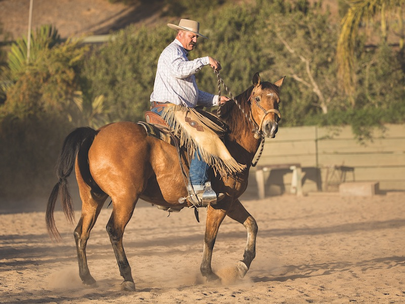 Bruce Sandifer demonstrates incorrect hand placement when training with a hackamore