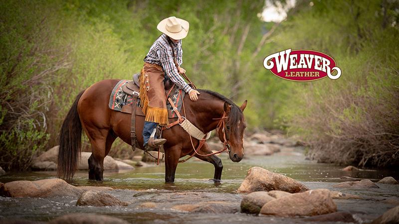 Weaver Leather synergy saddle pad
