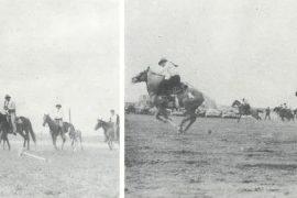 A Cowboy's Crown - Western Horseman
