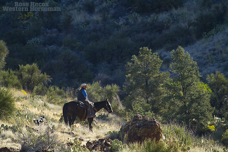cowboy and horse in rocky canyon at the 7 Up Ranch in Arizona
