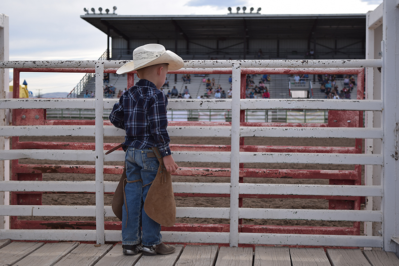 young cowboy standing behind bucking chute