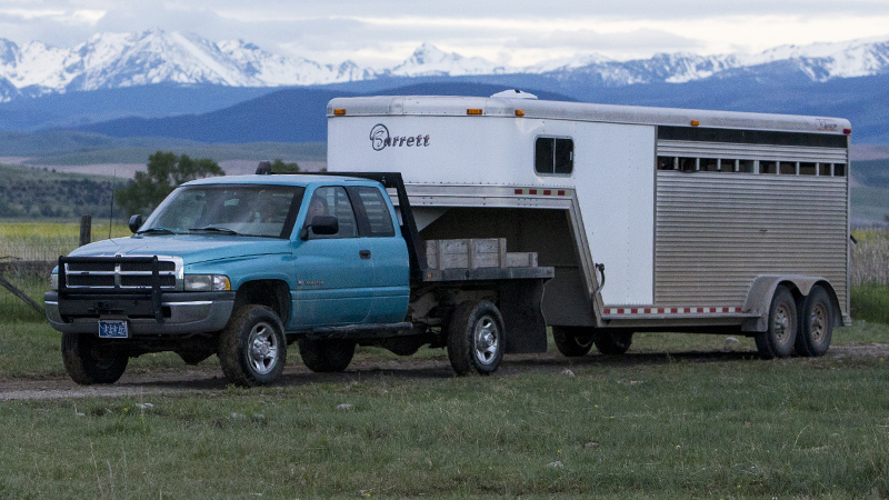 truck hauling horse trailer