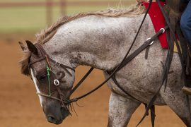 Cowboy Collectibles - Western Horseman