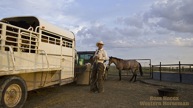 A cowboy, horse and stock trailer on the Hitch Ranch in the Oklahoma Panhandle