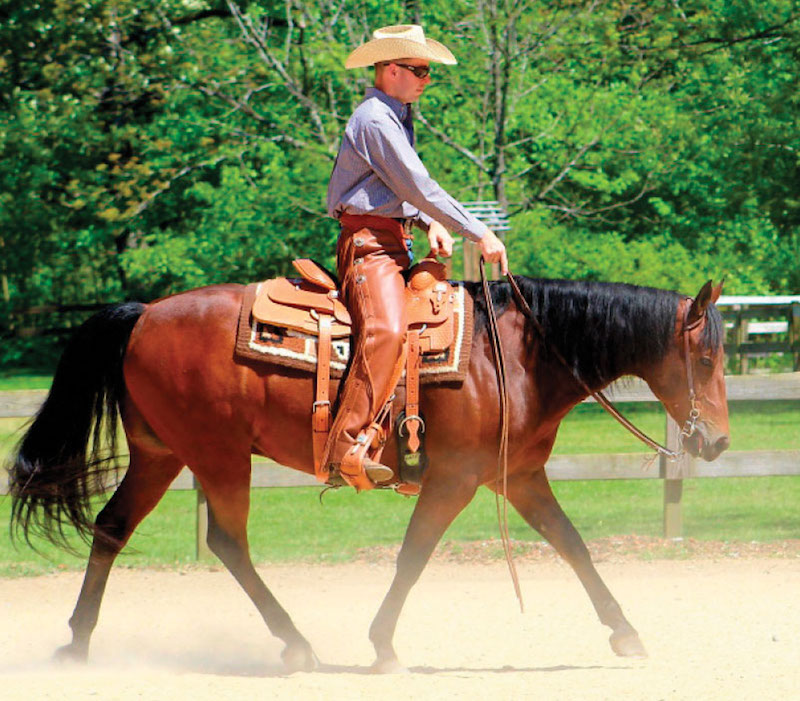 ranch rider riding bay horse named Sailor