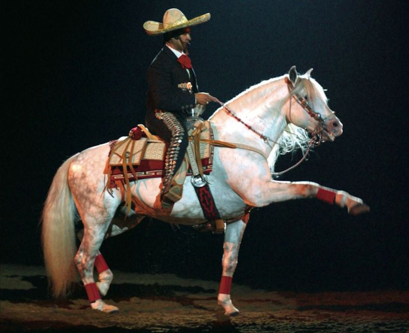 Jerry Diaz riding a grey charro horse