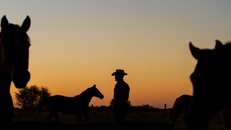 A silhouette of a cowboy at King Ranch