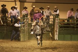 Western States Ranch Rodeo Association