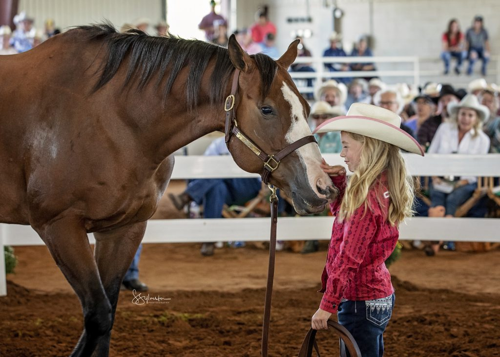 Bigtime Speed sold for $90,000 at the Return to the Remuda horse sale in Guthrie, Texas