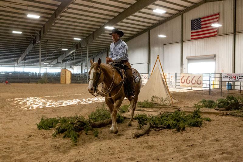 Ben Baldus piloting Seven S Woodrow at the 2019 Stock Horse of Texas World Championships