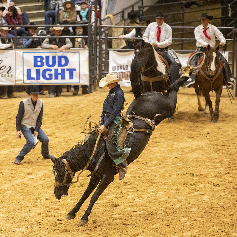 Justin Peterson broke an ranch bronc riding arena record in Amarillo.