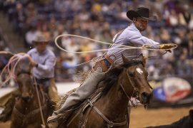 Nick Peterson of Jolly Ranch helps win the 2019 WRCA World Championship Ranch Rodeo title