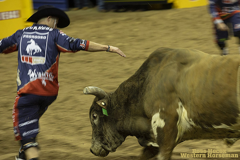 Bull fighter Dusty Tuckness distracts a bull.