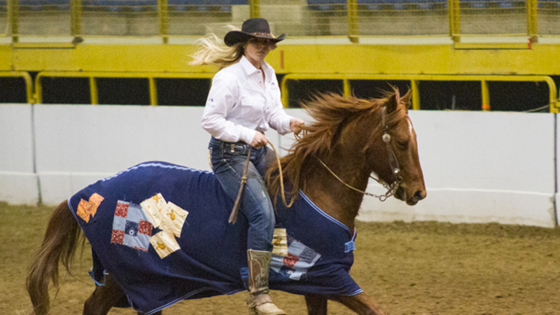 Rebecca Johnson and her adopted mare, Minnie Moo, won the open division at the 2019 Battle on the Rockies competition for adopted horses held in Denver, Colorado.