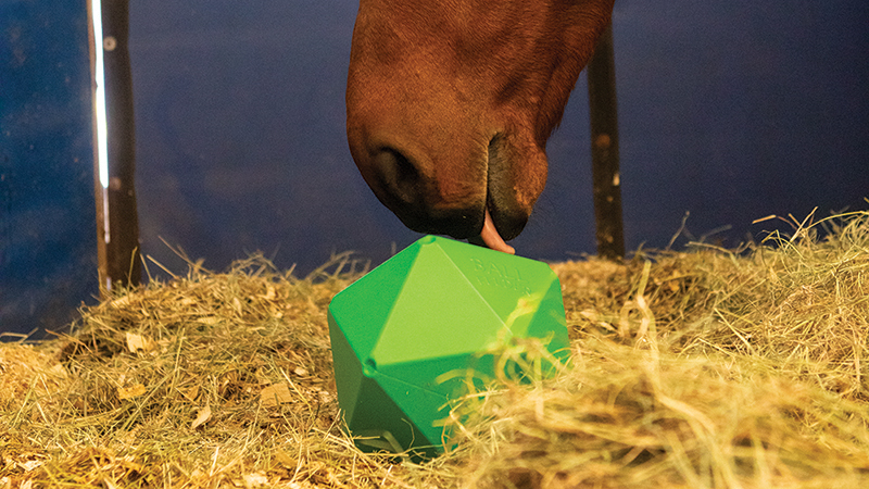 Providing toys in your horse's stall can alleviate stress and boredom.