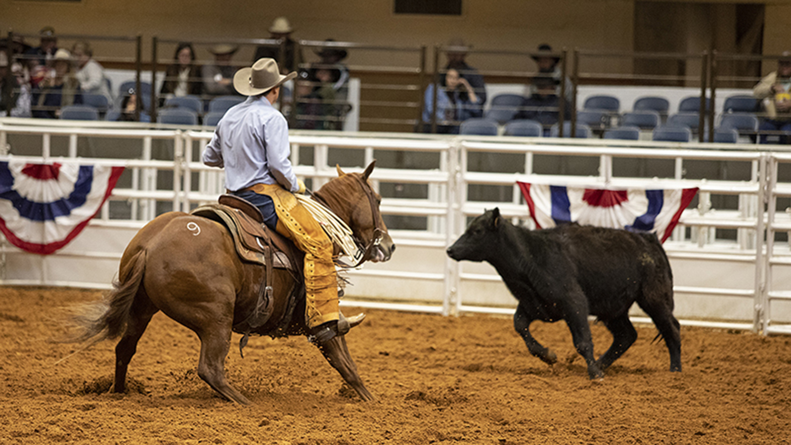 "At the FWSSR, Bonds Ranch gelding ""Steve"" impresses with rider Colby Hunt."