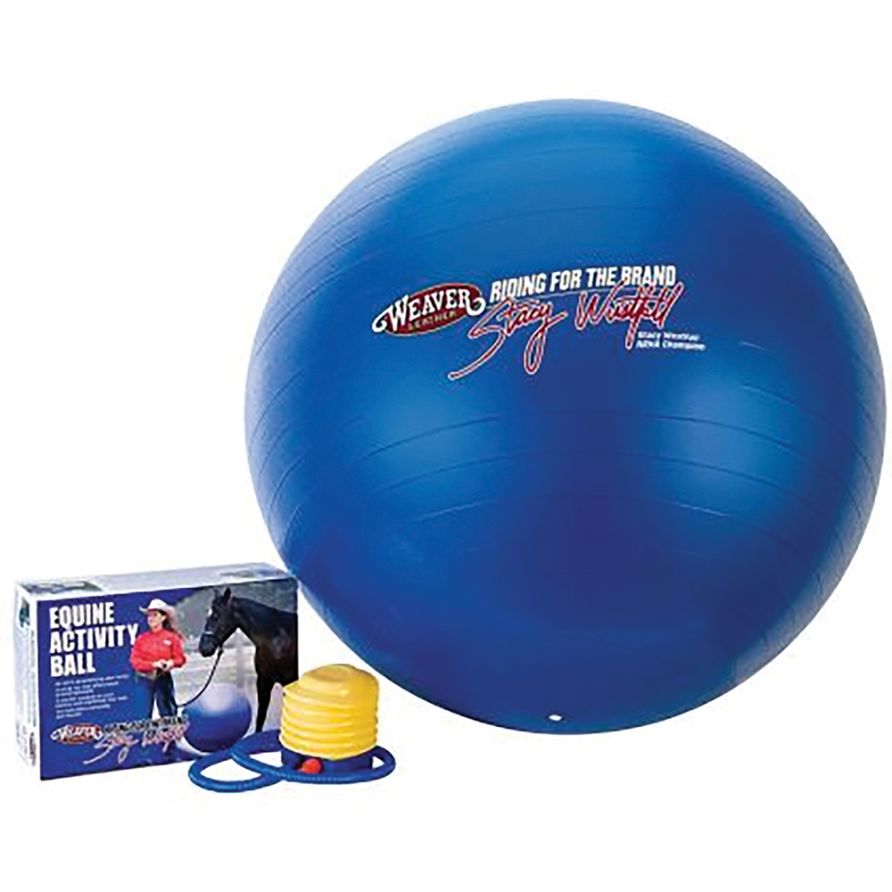 A ball designed for horses can be fun toy out in the pasture.