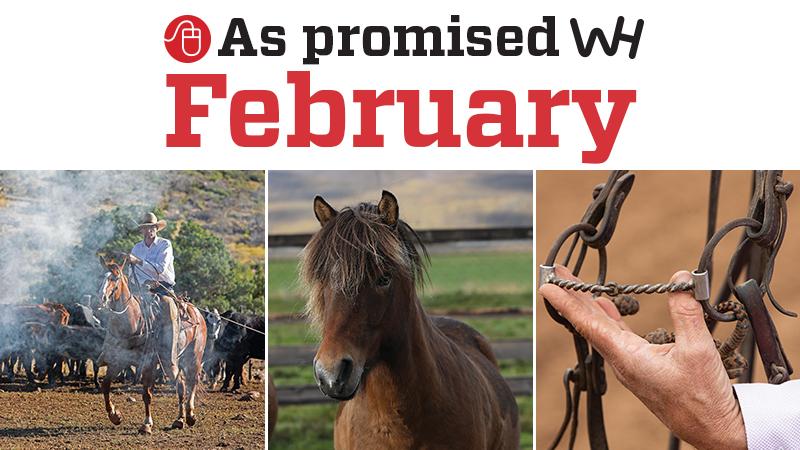 February 2020 western horseman as promised