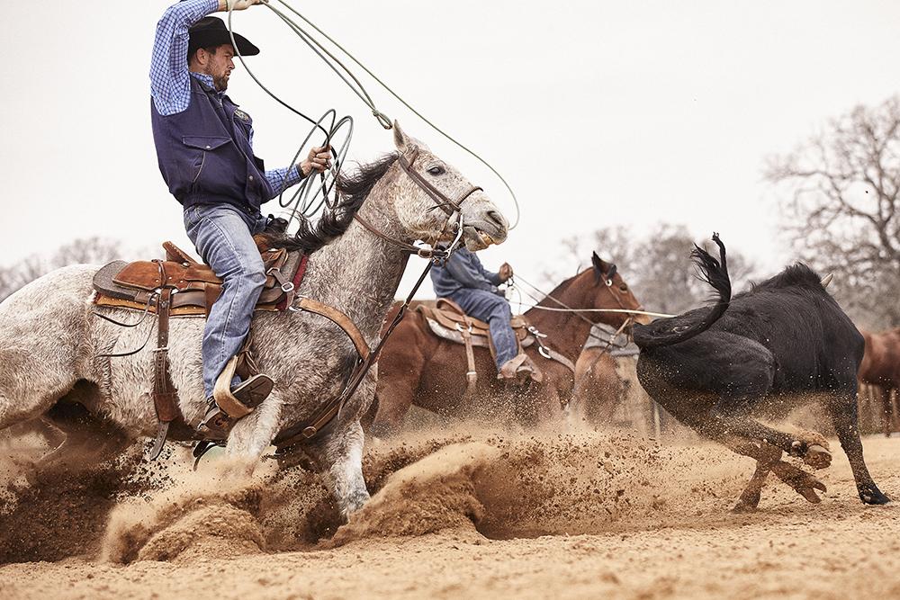 Paul Eaves roping