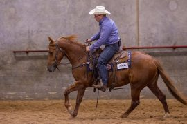 Brad Lund shows his reined cow horses and rope horses in ranch riding.