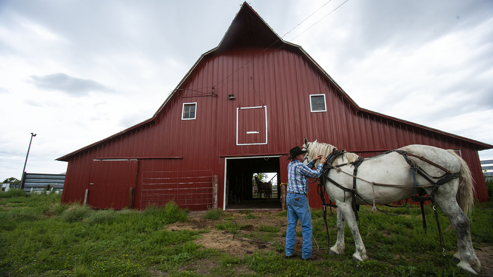 Buck Buckles' ranch features a classic-looking red barn.