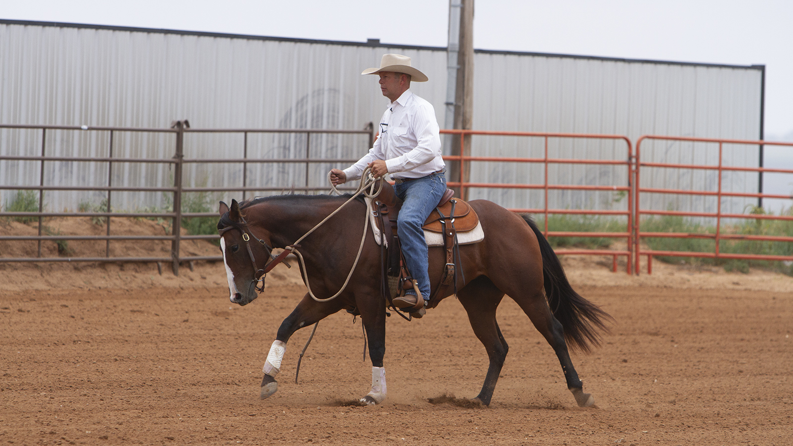 Trevor Carter uses a fenceline or long side of an arena to teach flying lead changes.