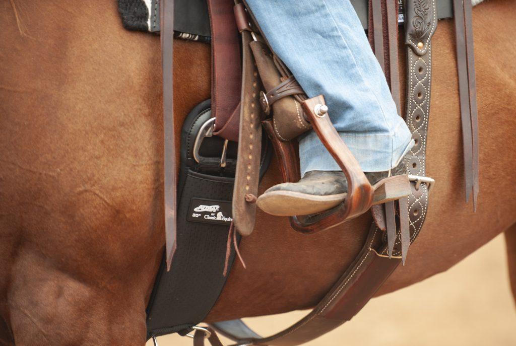 Classic Equine Aura Cinch