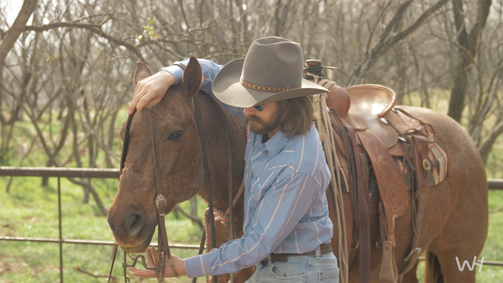 Super puncher Dale Brisby talks about bits and how to put a bit in a horse's mouth.