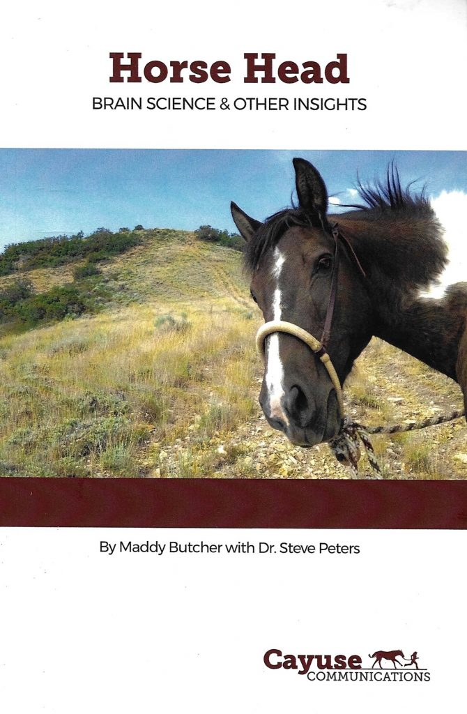 Horse Head Brain Science and Other Insights book offers a look at ideas from the horse's point of view.