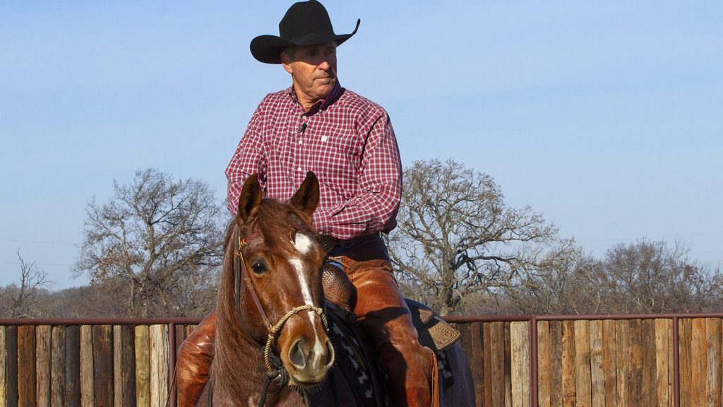 A loping hackamore is a greqt tool for a horse person to ride in.