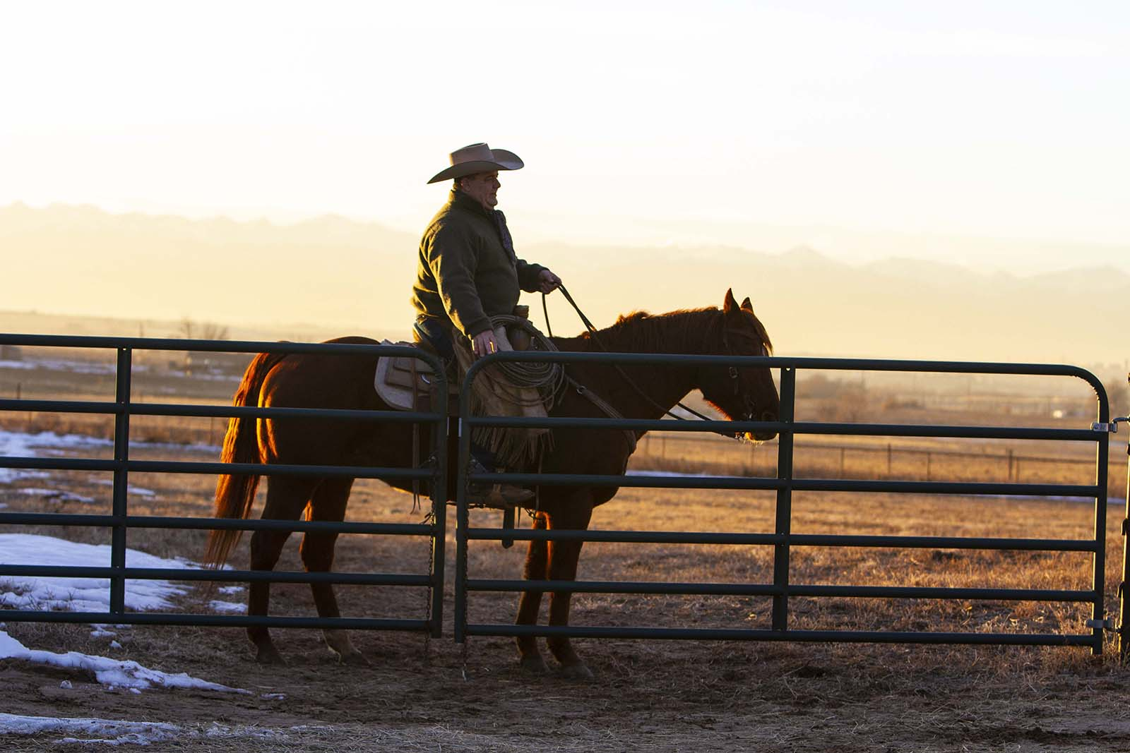 Mike Brashear opens a gate horseback in Fort Lupton, Colorado.
