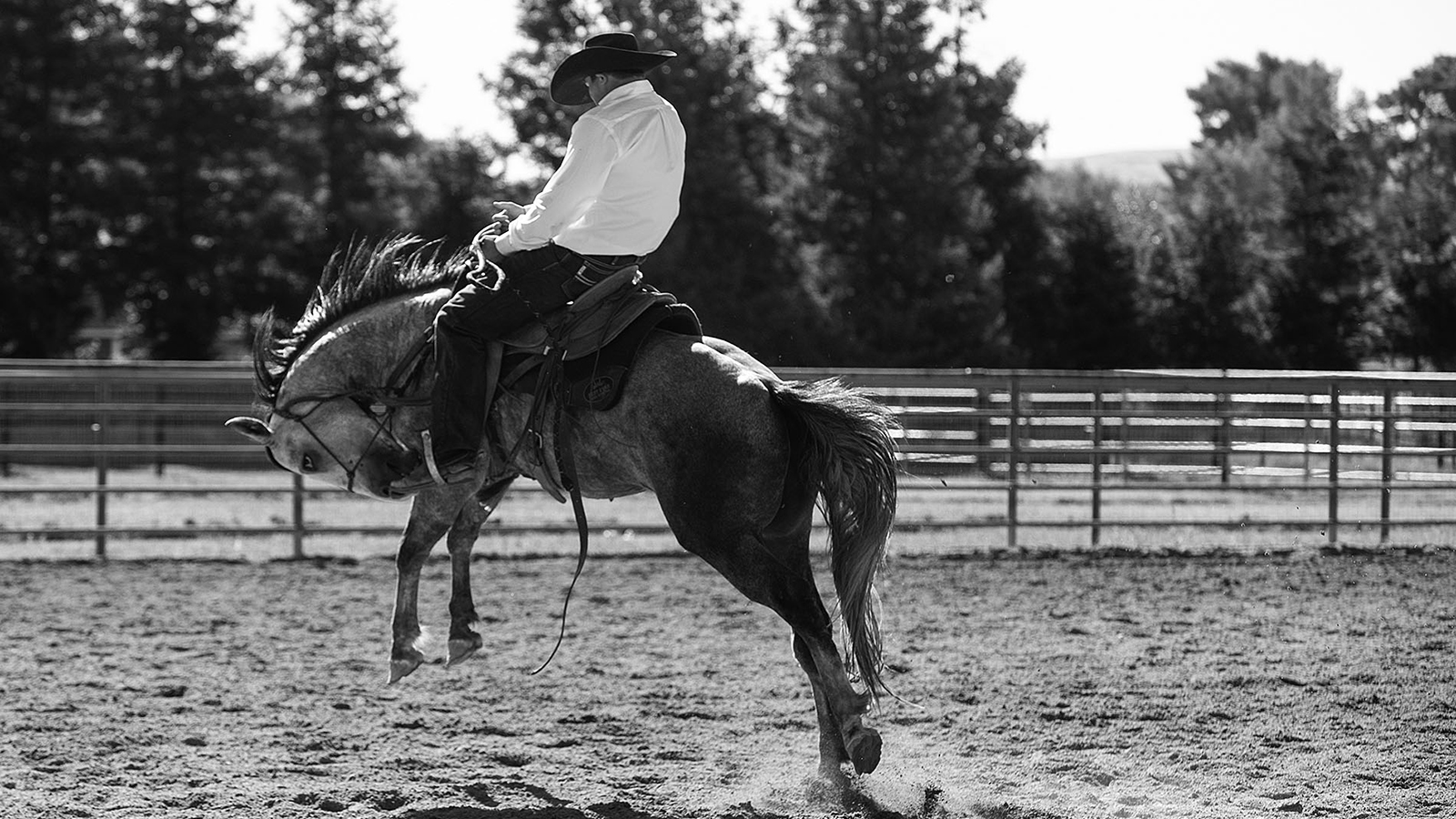 Horsemen and the Western industry can weather the coronavirus storm.