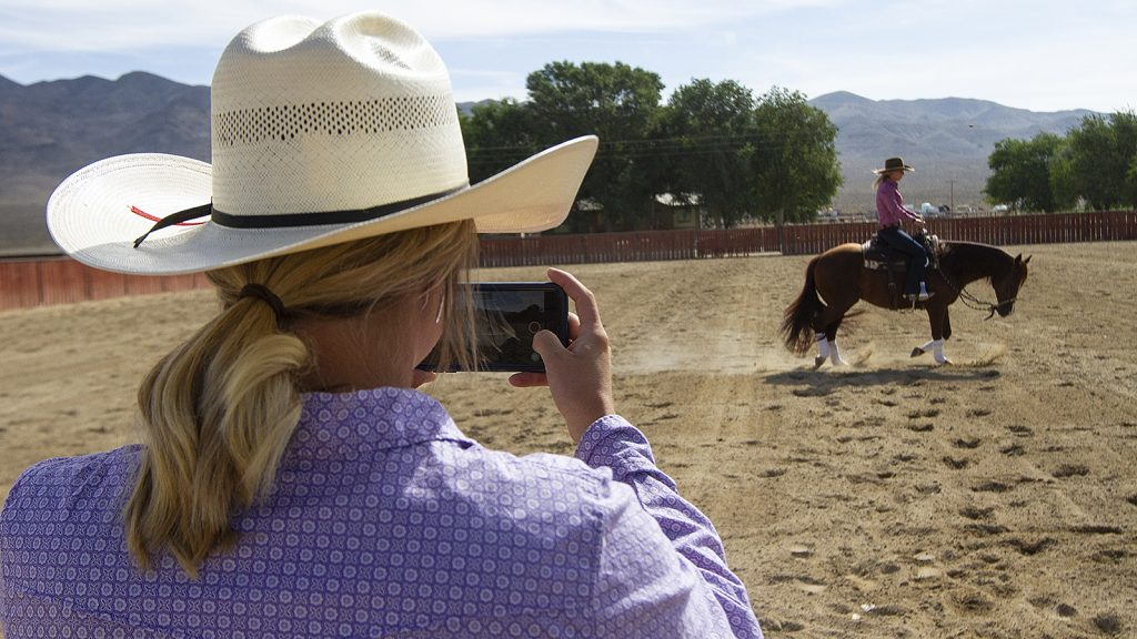 Virtual riding lessons are a great way to improve horsemanship.