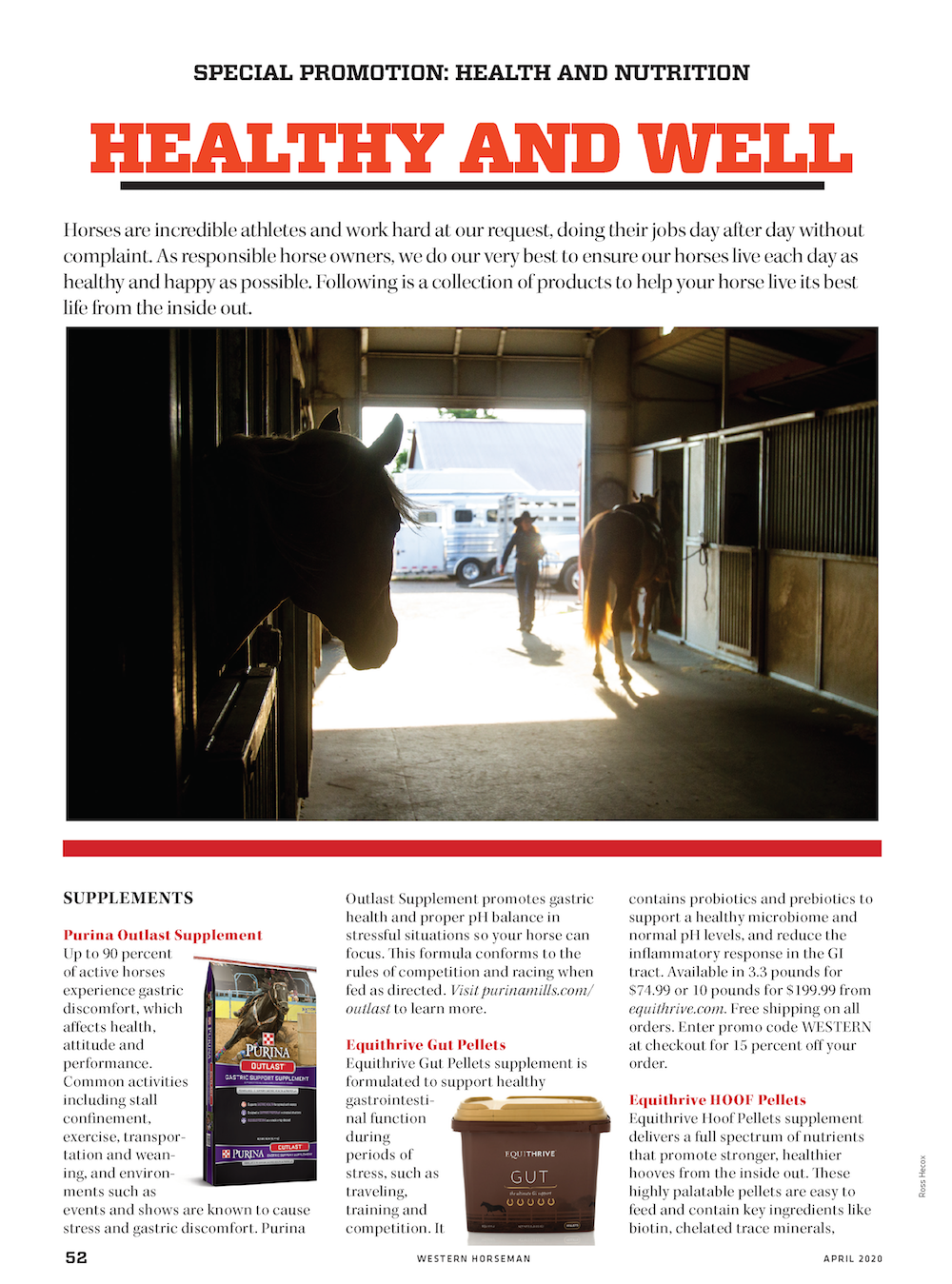 equine health and nutrition page 1
