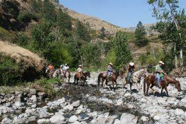 The Appaloosa Horse Club cancels its annual Chief Joseph Trail Ride.