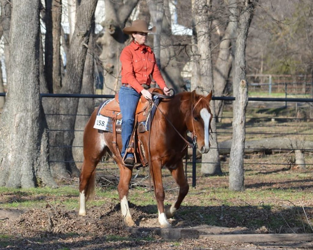 Ranch horse show